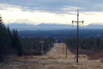 Diamond Ridge area, AK, with mountains and power lines running downhill